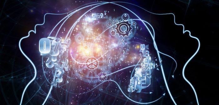 Neurosciences sociales