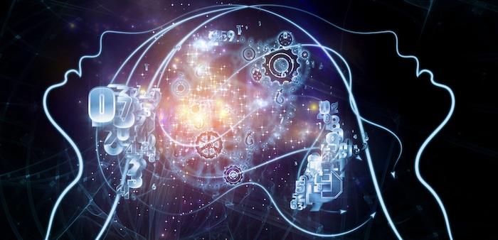 Les neurosciences? Oui. Mais les neurosciences sociales, ça vous parle?