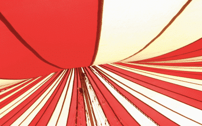 Managers : bienvenue au cirque!