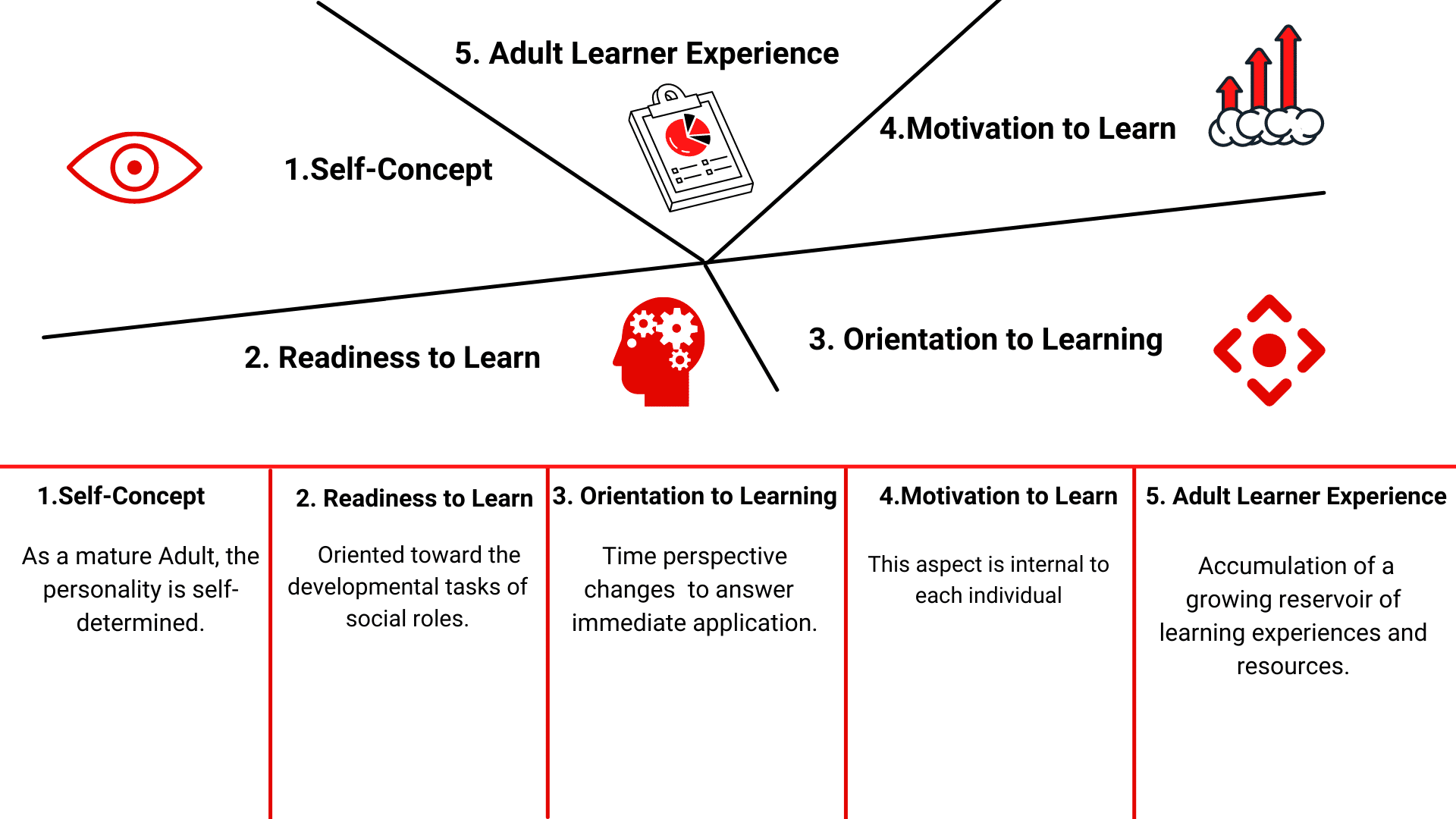 andragogy malcolm knowles